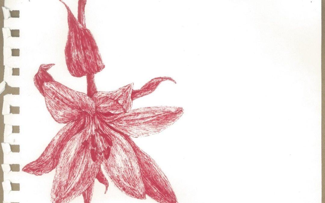 Emma Leslie artwork